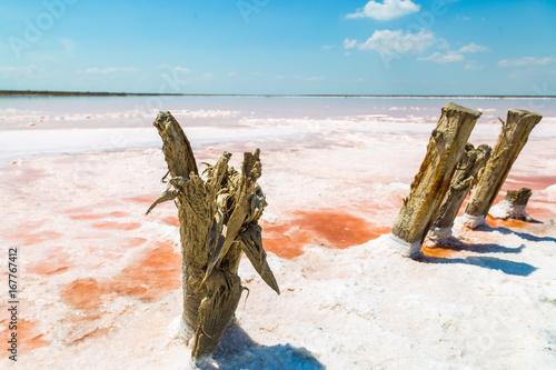 Canvas Prints Textures Salt sea water evaporation ponds with pink plankton colour