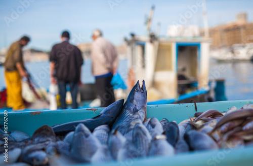 Fotografie, Tablou Marché de poissons à Vieux Port Marseille