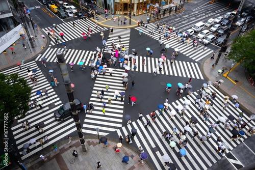 Stampa su Tela 雨の日の数寄屋橋交差点 スクランブル交差点のゼブラと色とりどりの傘がいい感じだ。