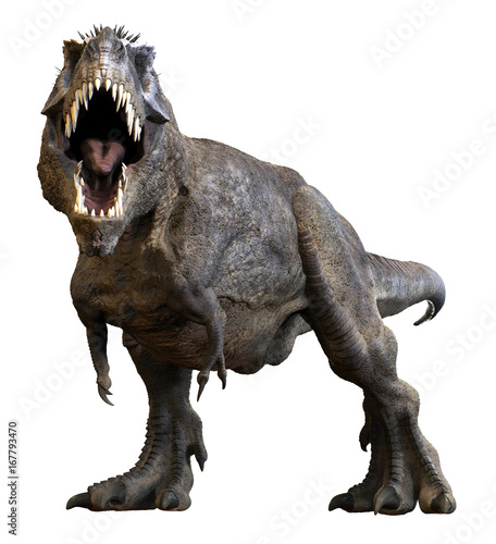 Photo  3D rendering of Tyrannosaurus Rex roaring, isolated on a white background
