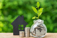 Stack Of Coins And Jar With Full Of Coins With Growth Sprout Plant As Property Or Mortgage Investment Concept