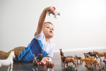 Adorable Little Boy Playing With Animal Toy Figures