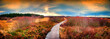 Leinwanddruck Bild - Panoramic autumn landscape with wooden path. Fall nature background