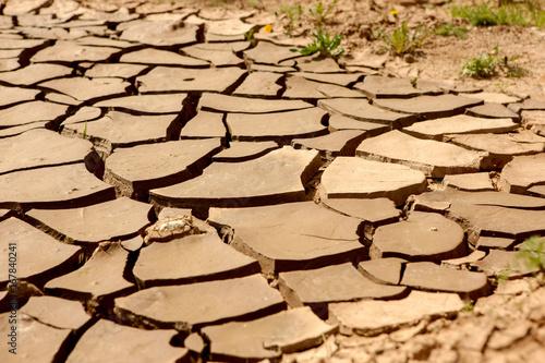 Fotografia Mud arid