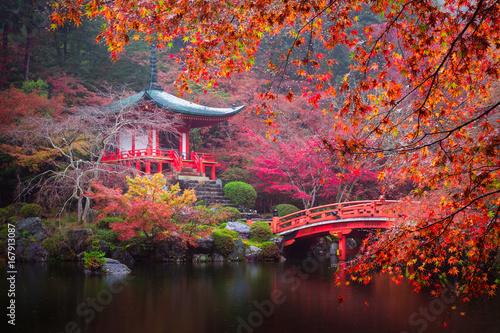 Foto op Plexiglas Bedehuis Daigo-ji temple in autumn