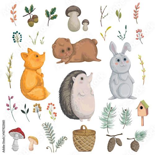 Kolekcja zwierząt leśnych, grzyby, rośliny, jagody, szyszki. Elementy ozdobne w stylu przypominającym akwarele na kartkę z życzeniami, zaproszenie, baby shower party. Bohaterowie kreskówek. Ilustracji wektorowych.