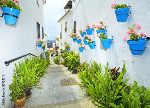 Street of Mijas with flower pots in facades Wallpaper Mural