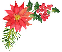 Christmas Bouquet With Poinsettia And Berries