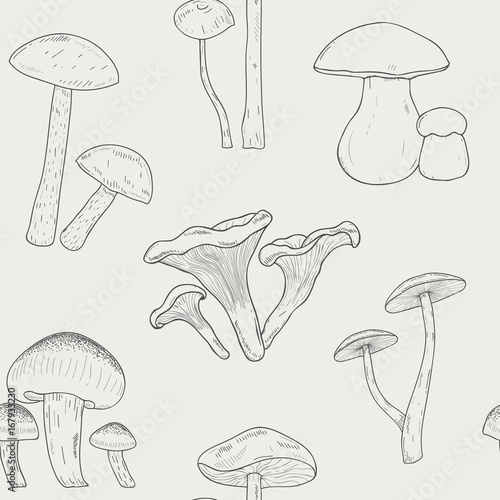 Photo Different mushrooms outline seamless pattern