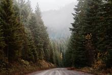 Mountain Roads In Autumn