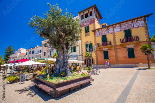 Photo Alghero old city center with olive tree and colorful houses, Alghero, Sardinia