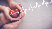 Adult And Child Hands Holding Red Heart With Cardiogram, Health Care Love And Family Concept, Health Insurance, World Heart Day, World Health Day, World Hypertension Day