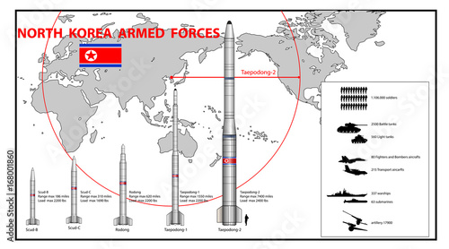 Fotobehang Art Studio Infographics of North Korea armed force