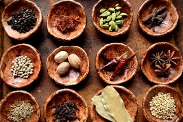 小皿に盛った12種のスパイス