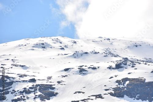 Fototapety, obrazy: Schnee21
