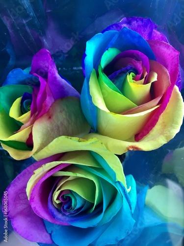 Fototapeta flower obraz na płótnie