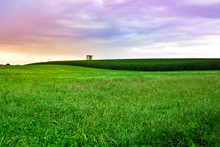 Beautiful Farm Field With Gras...