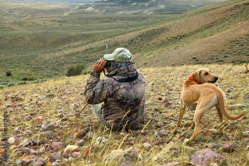Obraz na dibondzie (fotoboard) Łowca kojotów i pies szukający ofiary ze wzgórza