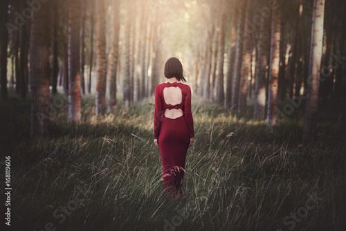 Fotografie, Obraz  chica en el bosque