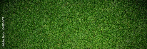 Close up view of astro turf Canvas Print
