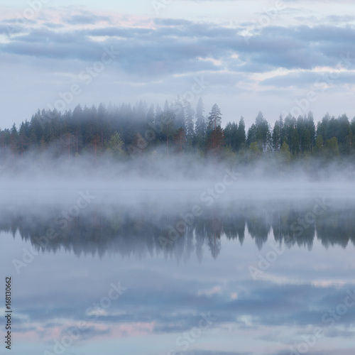 Poster Morning with fog Calm foggy lake scape summer night