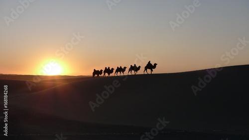Staande foto Marokko sunset