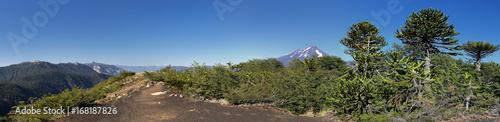 Keuken foto achterwand Nieuw Zeeland Hiking trail at Conguillio NP, Chile