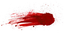 Blood Splatter Painted Vector ...