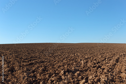 Photo  Agriculture