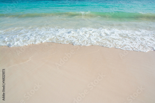 beautiful wave of ocean on the beach Canvas Print