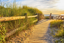 Wooden Path To The Ocean. Ramp...