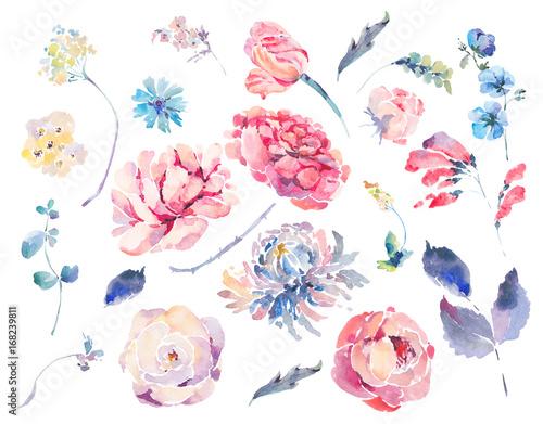 Fotografering  Watercolor set of vintage floral summer roses