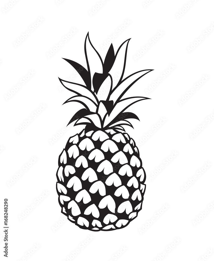 Ananas Rysunek tapeta winylowa na flizelinie czarny obraz owoców