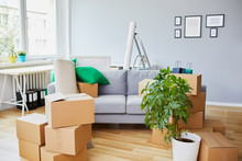 Conceptual Shot Of Home Interior During Move-in With Sofa In The Middle And Boxes Lying Around