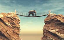 An Elephant Goes On A Wooden B...