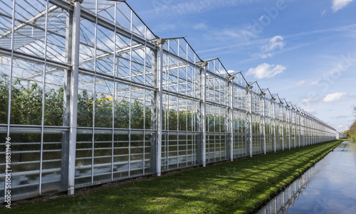 Fotografía Tomato Greenhouse Harmelen with Ditch