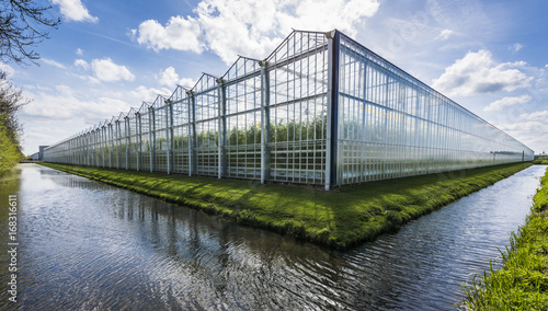 Photo Tomato Greenhouse Harmelen