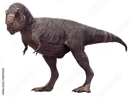 Fotografie, Obraz  3D rendering of Tyrannosaurus Rex with no feathers, isolated on a white background