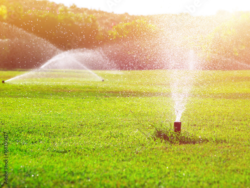 Obraz automatic lawn watering system irrigating grass, toned, sunlight effect - fototapety do salonu