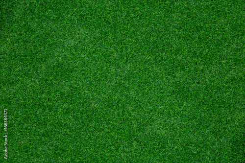 Foto auf Leinwand Gras green grass texture background