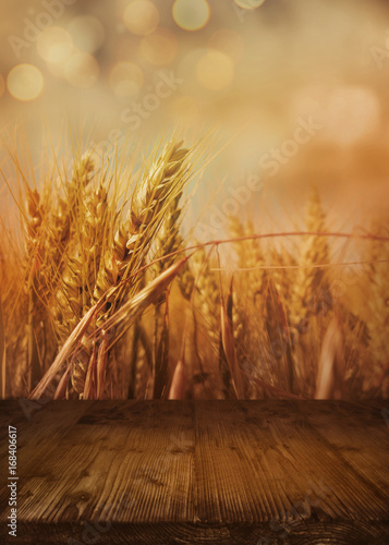 obraz PCV Cornfield in autumn with wooden table