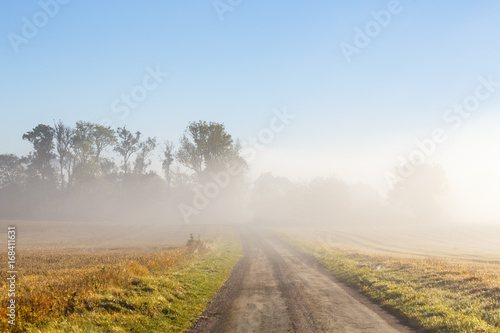 Fototapety, obrazy: Morning mist over a road in the countryside