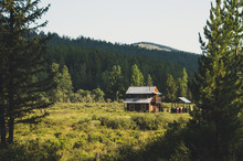 A Log Cabin In The Hunting Fie...