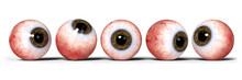 Five Realistic Human Eyes With Brown Iris, Isolated On White Background