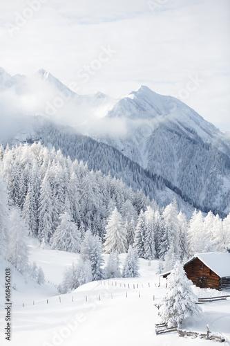 Tuinposter Alpen Wintermärchen in den Alpen