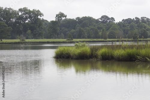 Fotografija  Gloucester Virginia,South,Marsh,Inlet,Chesapeake Bay, August,Summer,