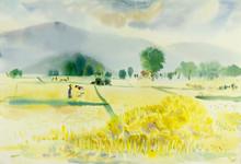 Original  Painting Colorful O...