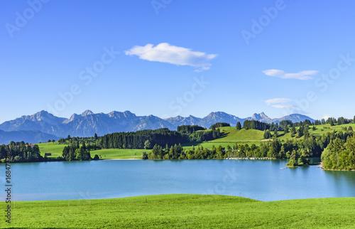 Foto op Plexiglas Panoramafoto s Blick auf den Forggensee und die Allgäuer Alpen