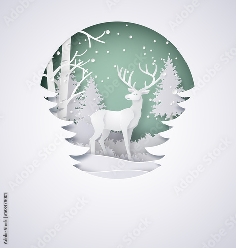 Foto  Deer in forest with snow in the winter season and christmas