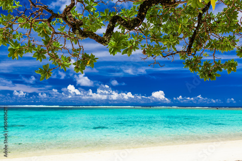 Deurstickers Tropical strand Beach on tropical island during sunny day framed by a tree with green leaves